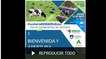lecheria videos